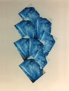 Plastic sacks (blue)